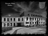 Alu-Dibond Tholey-Rathaus