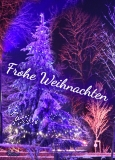 Ansichtskarte Schaumberg Weihnachtsbaum