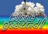 Postkarte BLEIB GESUND